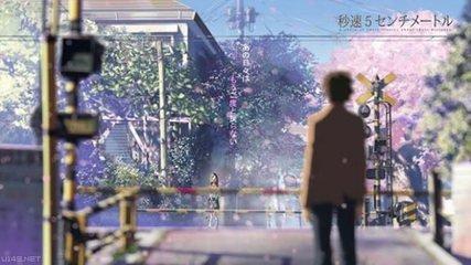 听说 樱花飘落的速度是每秒五厘米,而我,要以怎样的速度才能与你相遇?